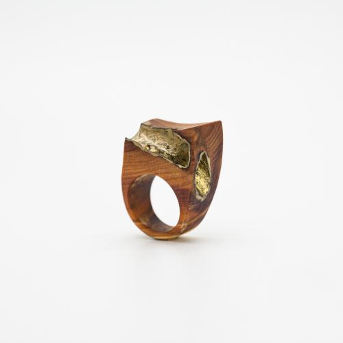Wood-ring-simone frabboni