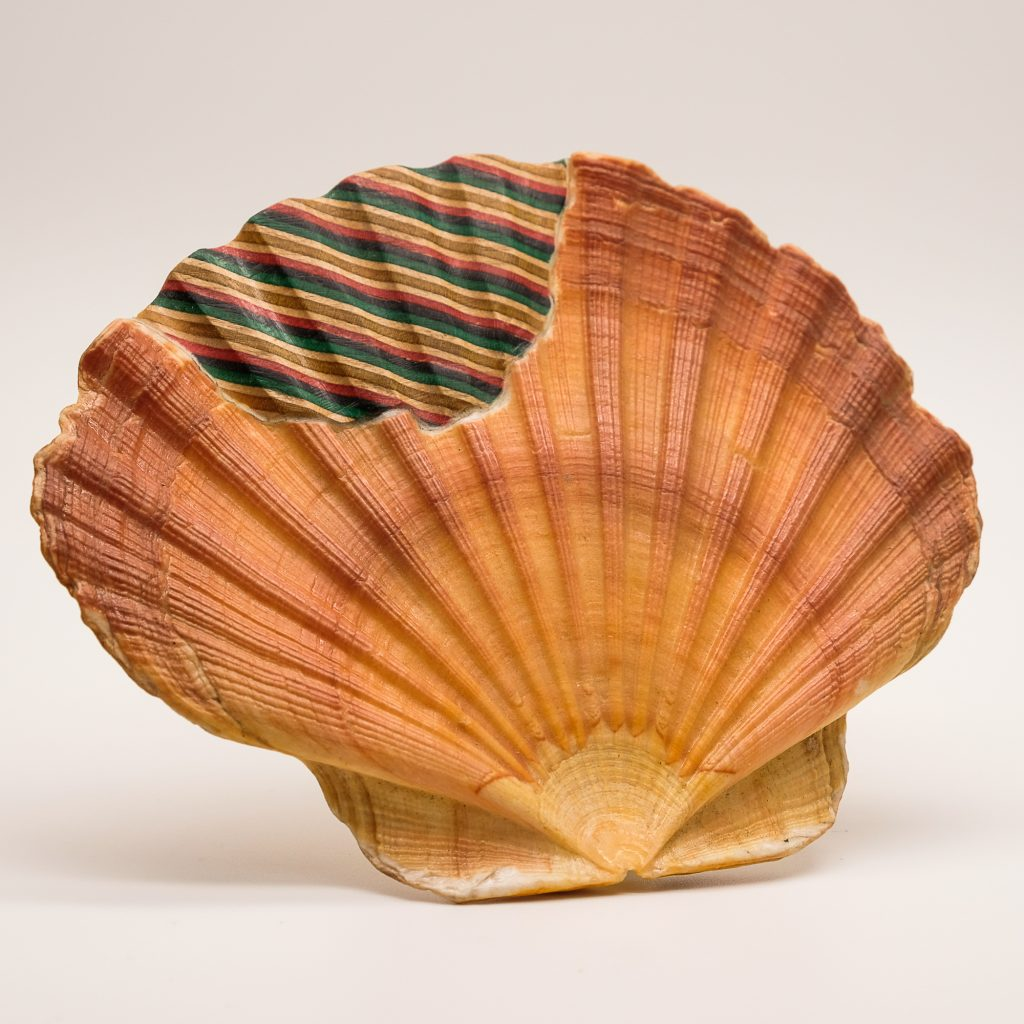 wood shell brooch