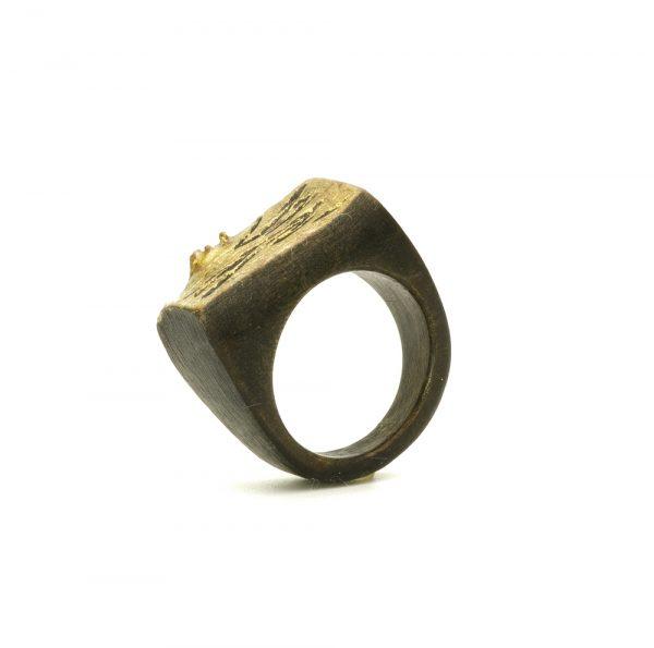 black wood gold ring6.resized